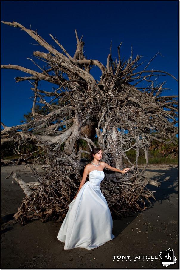 jekyll island wedding driftwood beach